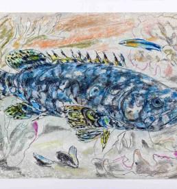 LIndner-Fisch-komprimiert